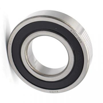 Stainless Steel Deep Groove Ball Bearing Used on Shaker