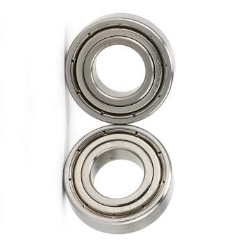 High Precision N 204 Ecml Bearing for Internal-Combustion Engine