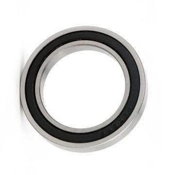 Nj200 Nj300 Series Wheel Hub Bearing Cylindrical Roller Bearing for Auto Parts