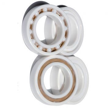 Deep Groove Ball Bearing 2RS Bearing Distributor of NSK SKF NTN Koyo 6307 6307zz 6307 2RS