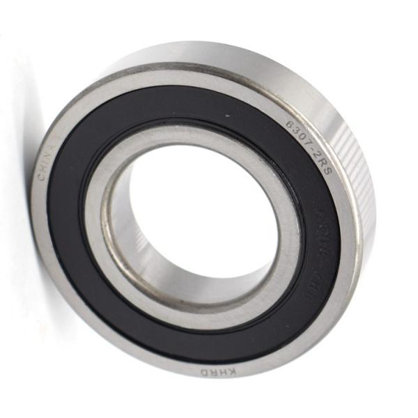 Stainless Steel Deep Groove Ball Bearing Used on Shaker #1 image